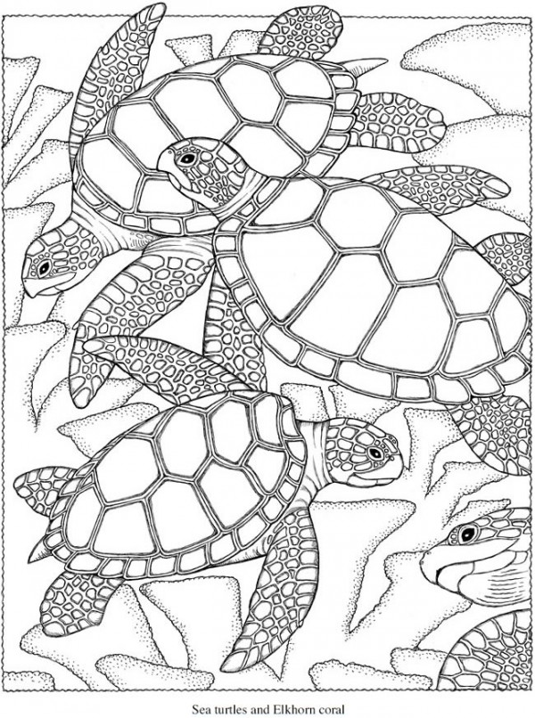 Aboriginal Coloring Pages. Fish Hard Mosaic Coloring Pages. Detailed ...